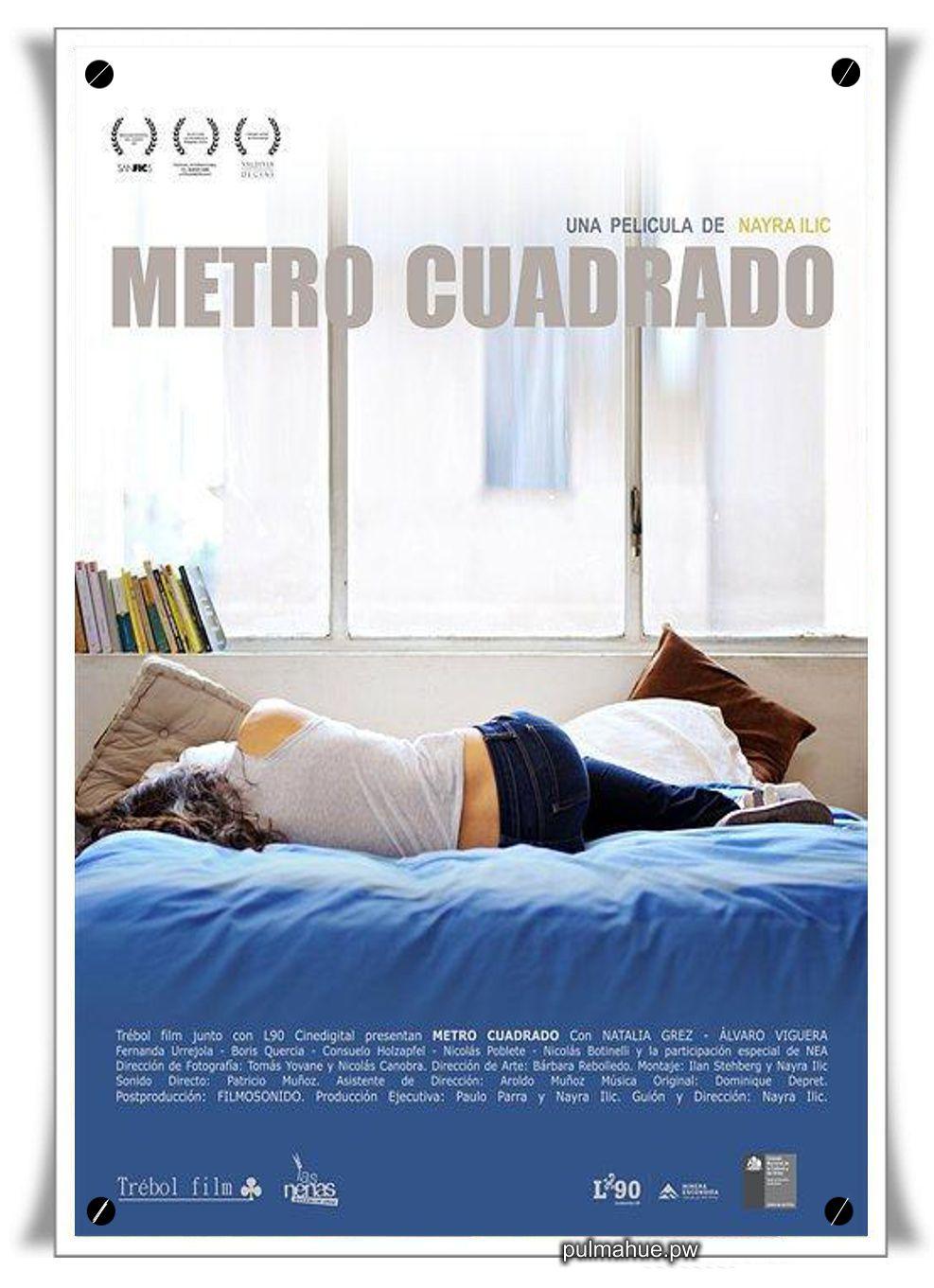 holanda metro cuadrado: