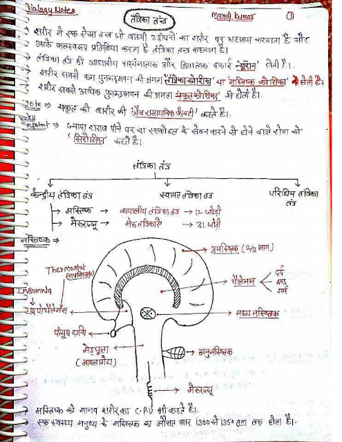 biology-science-handwritten-notes-pdf
