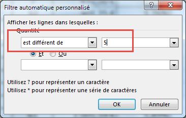 Fenêtre de filtre automatique personnalisé