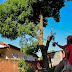 BATAGUASSU| Saúde intensifica combate à leishmaniose após registro de morte