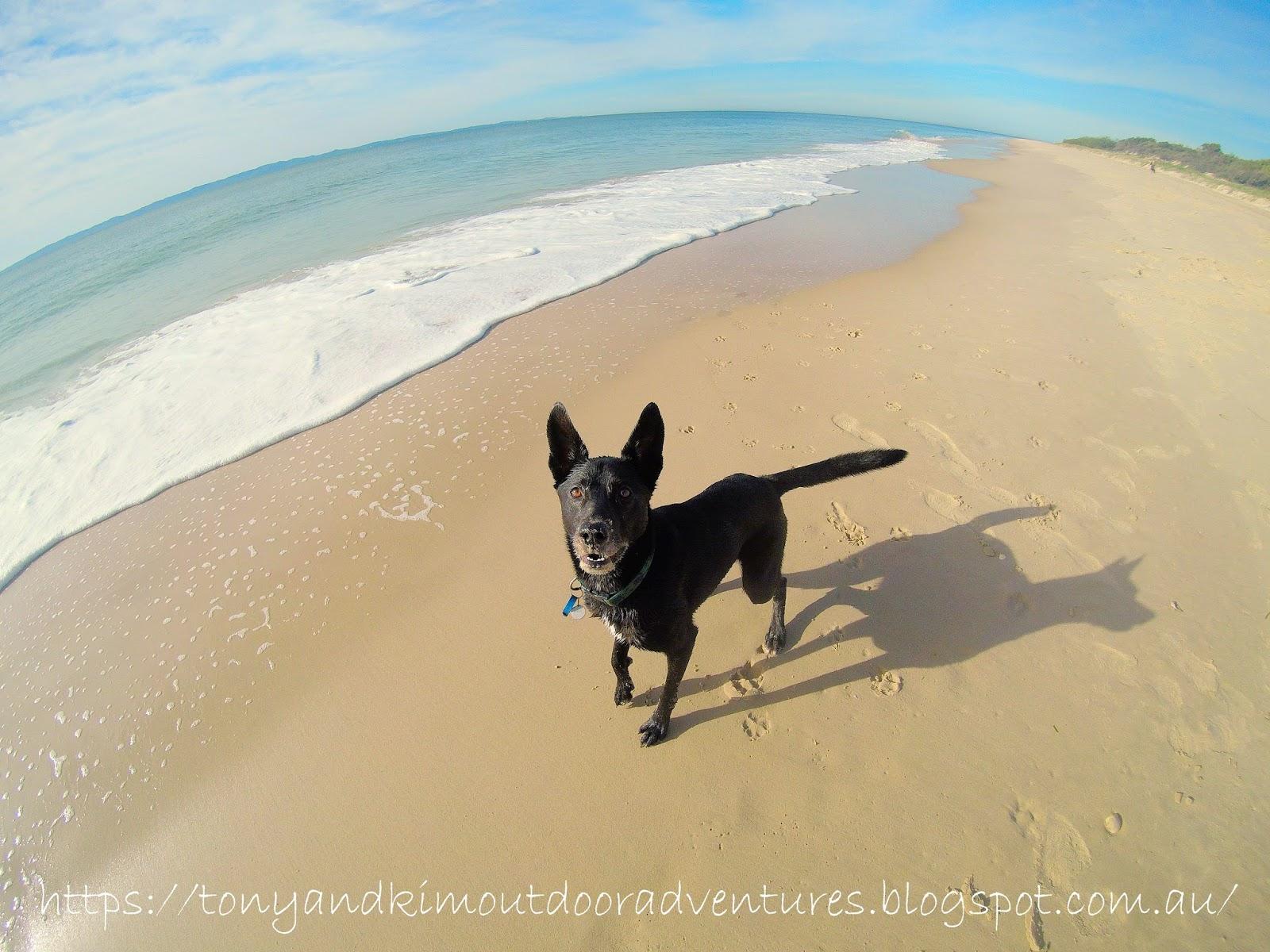 RED BEACH, BRIBIE ISLAND - Tony and Kim + Shari Outdoor