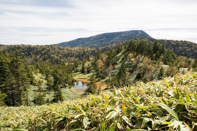 cestování po světě, blog, japonsko, nagano, shigakogen, trail around ponds