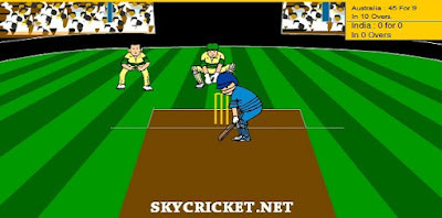 Play virtual cricket 2 game online