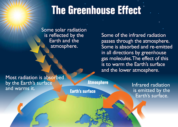 What is the main causes of Green Houses Effect?
