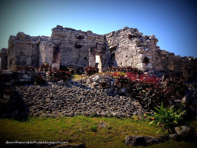 Tulum Mexico, things to do in Akumal, things to see in Mexico