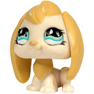 Littlest Pet Shop Singles Rabbit (#610) Pet