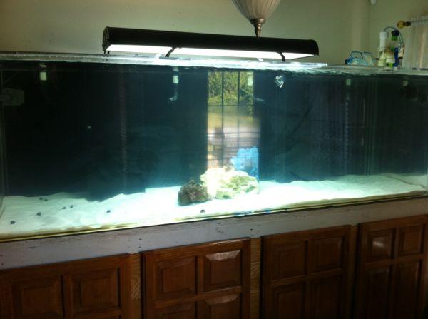 have a nice 400 gallon aquarium set up it comes with 150 gallon sump