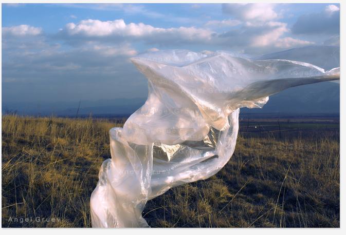 Angel Gruev,Fine Art,Masterpiece,Contemporary art