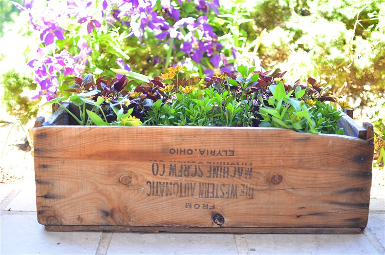 Planting Box at A Nest for All Seasons