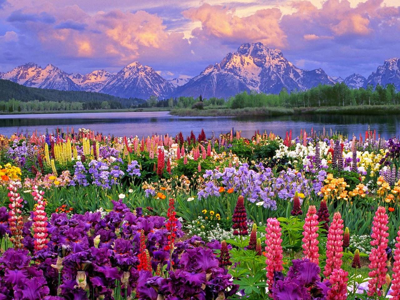 Resultado de imagen de primavera