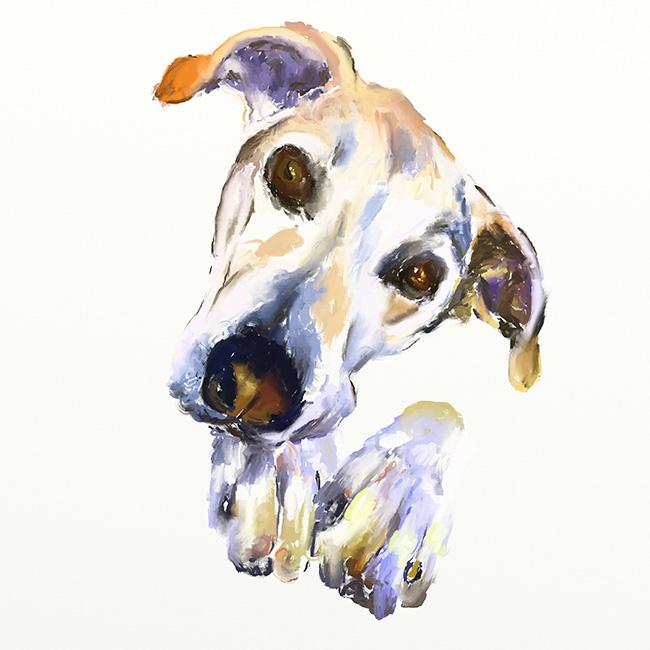 Retrato de un perro a óleo