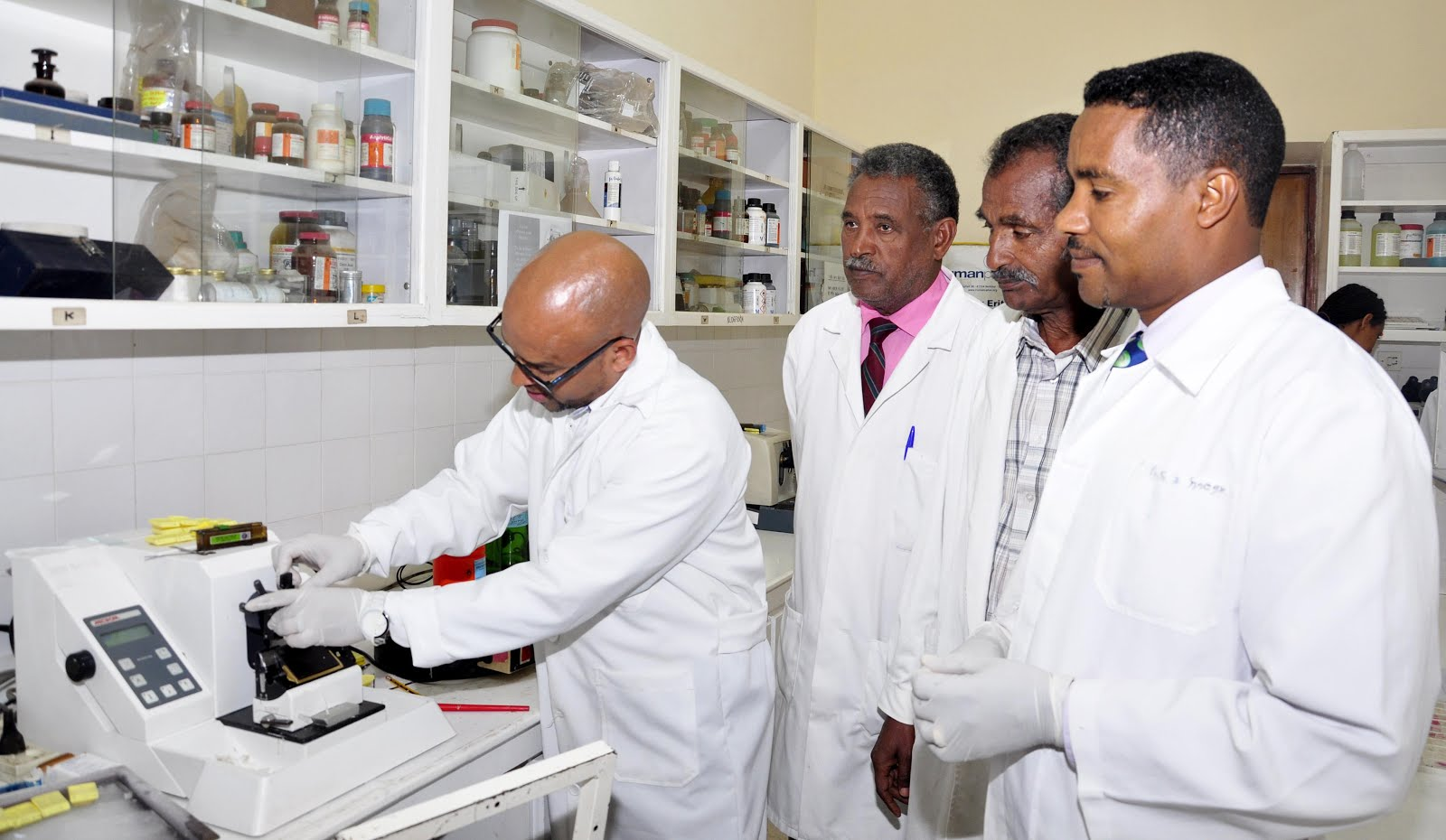 <Launching of Anatomical Pathology Service Project in Eritrea