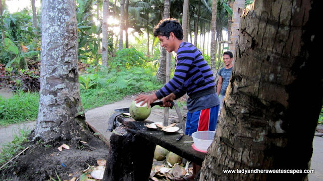 cocunut boy preparing the coconut for us in Leyte Tour