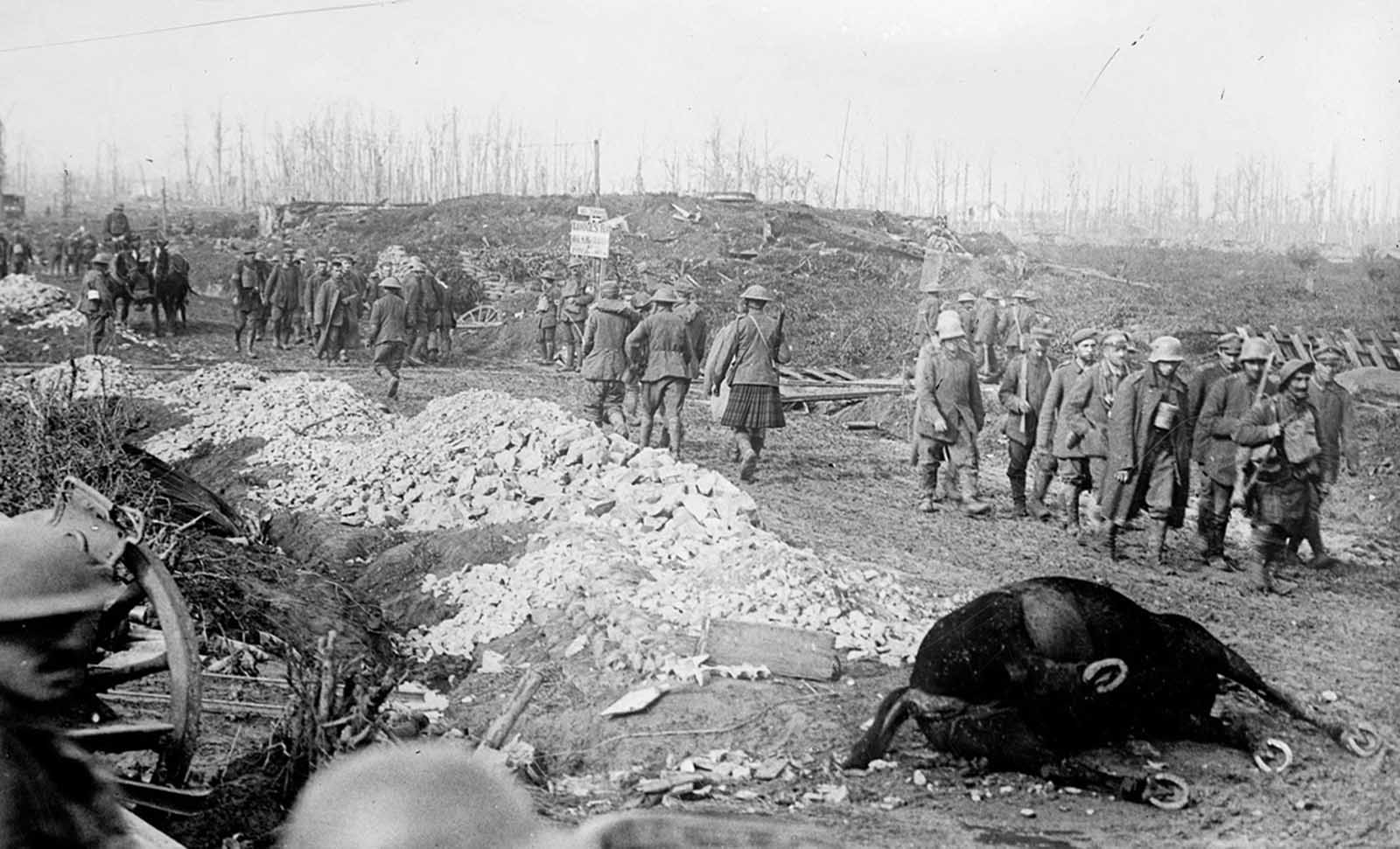 British soldiers and Highlanders with German prisoners walk past war ruins and a dead horse, after the Battle of the Menin Road Ridge, part of the Third Battle of Ypres in September of 1917. The sign near the railroad tracks reads (possibly):