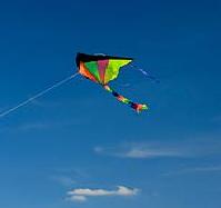 basant kite flying essay educational wealth basant kite flying
