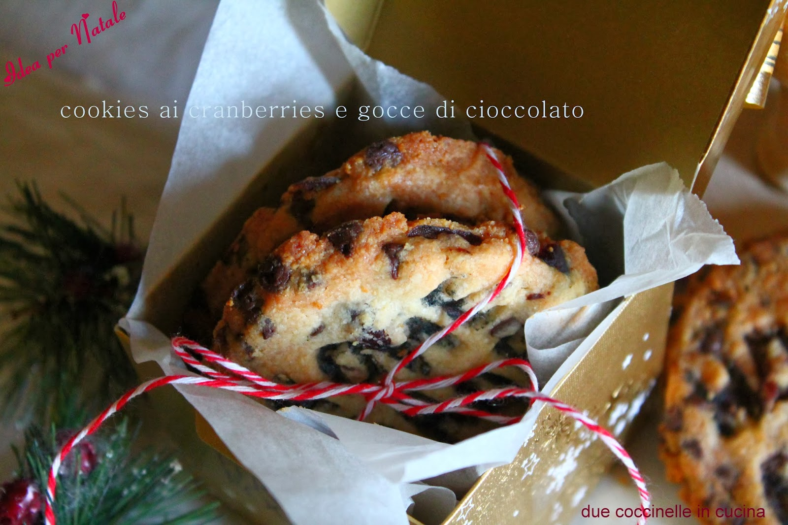 due coccinelle in cucina: Idee per Natale: Cookies con cranberries e ...
