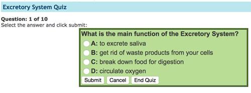 Excretory System Quiz