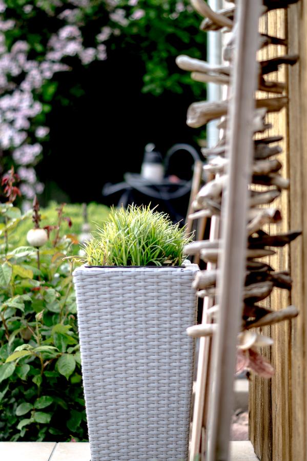 Blog + Fotografie by it's me! | fim.works | Typisch für meinen Garten | Gras im hellgrauen Übertopf, Treibholz