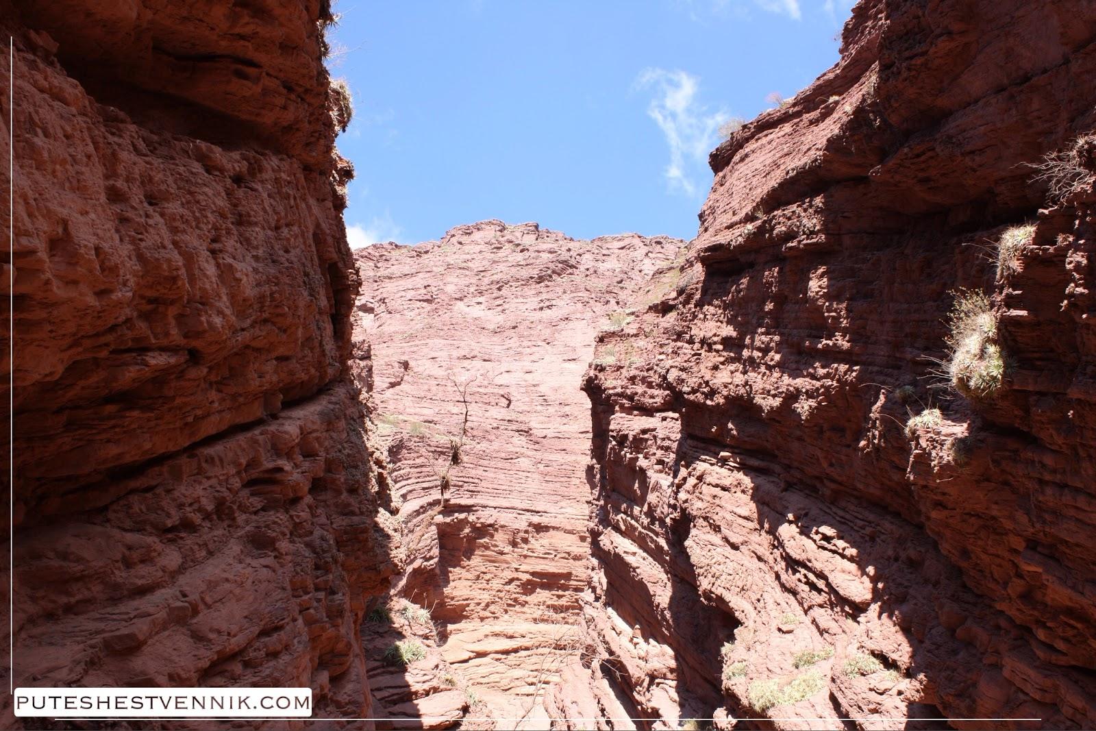 Каньон и красные скалы