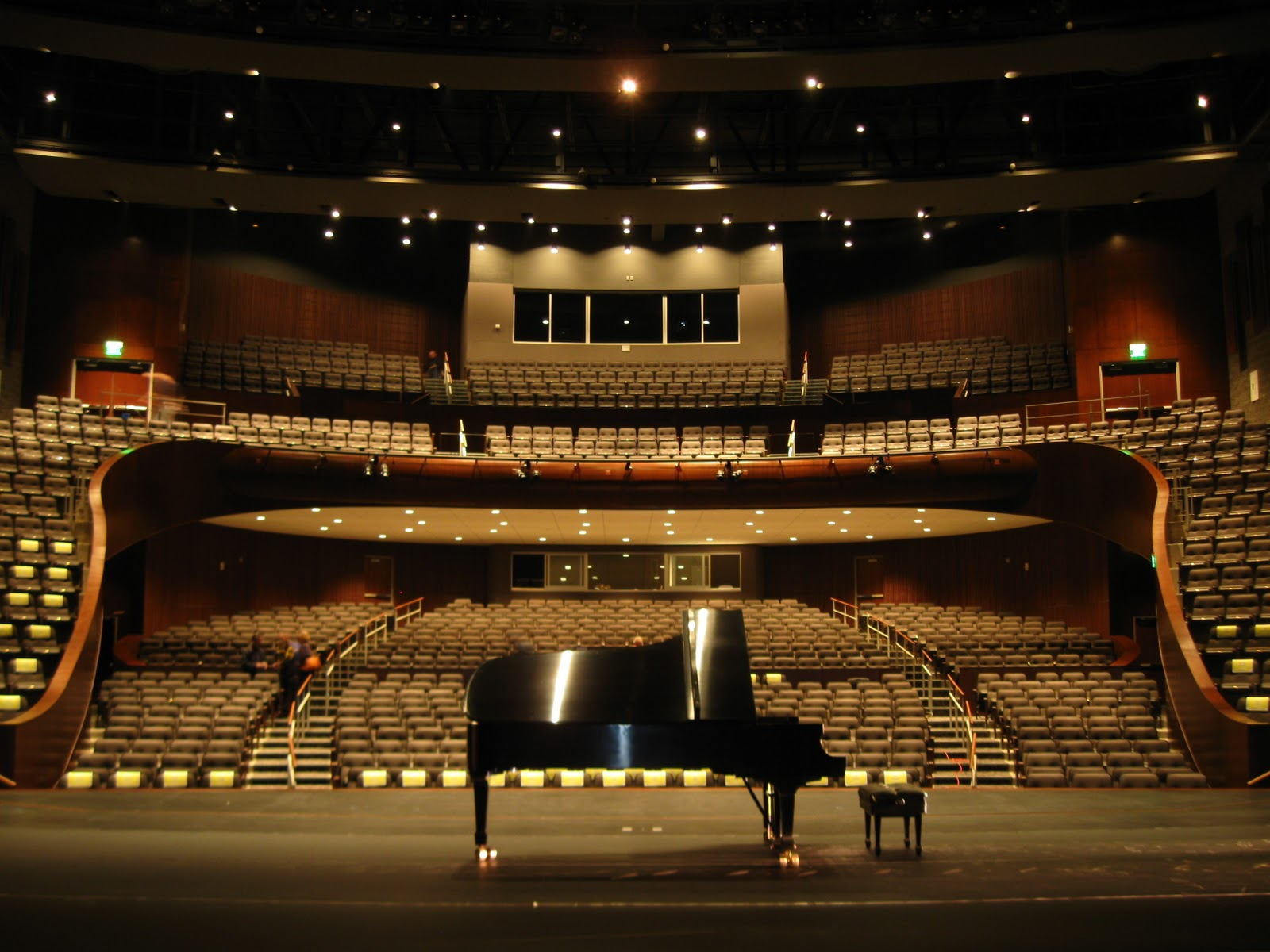 Chelsea Wan's Writing Blog: The Story of a Successful Pianist