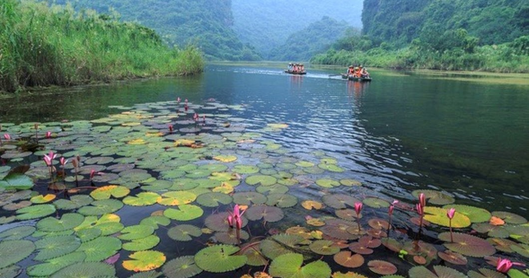 Three Destinations in Tam Coc- Bich Dong at Weekend | Vietnam Wonders of The World