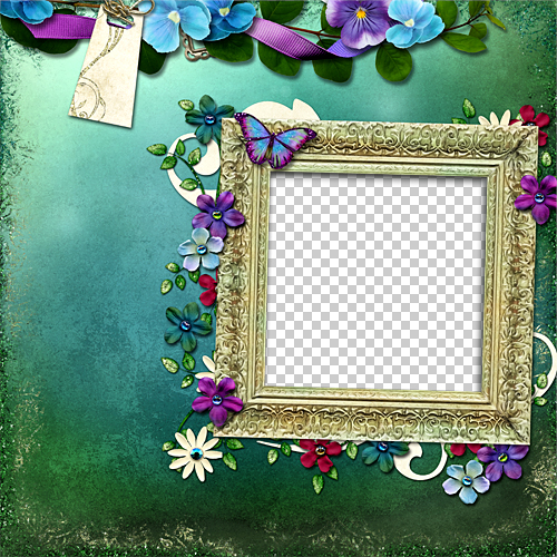 Beauty In Frame: See Graph: Beautiful Flower Photo Frame