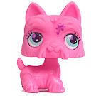 Littlest Pet Shop Blind Bags Scottie (#2876) Pet