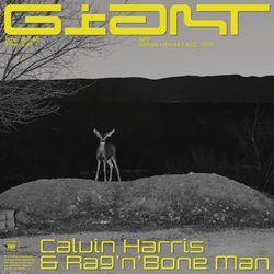 Baixar Giant - Calvin Harris & Rag'n'Bone Man Mp3