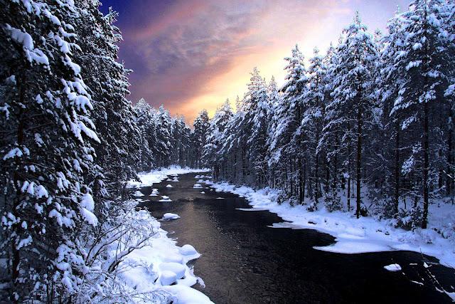 Rivier met bomen en sneeuw in de winter