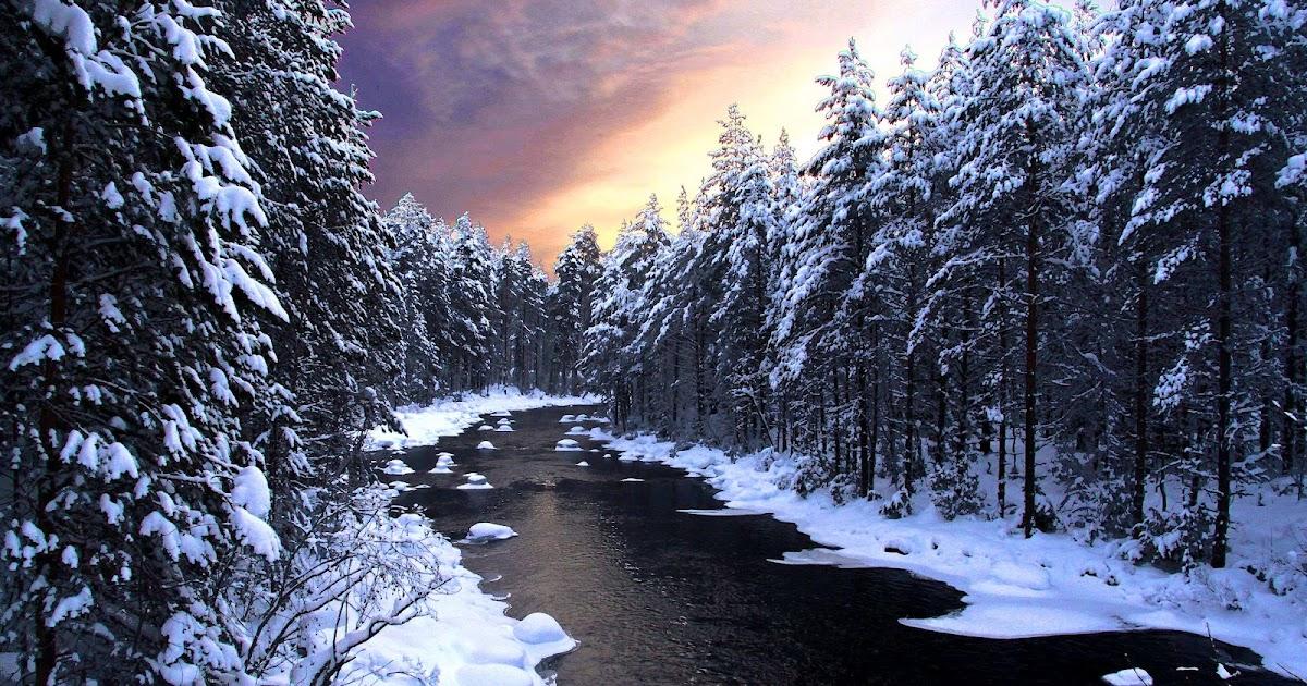 Winter wallpaper met rivier en bomen  Mooie Leuke