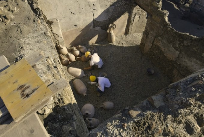 Ελληνικούς αμφορείς κρασιού από την Κρήτη ανακάλυψαν  στην Πομπηία
