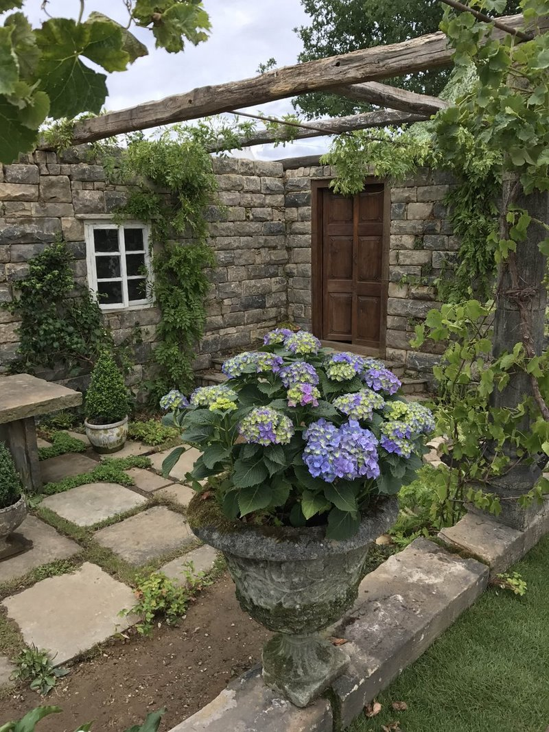 Hortensias (Hydrangea macrophylla) en The Pazo's Secret Garden. Rose McMonigall. RHS Hampton Court Flower Show 2017