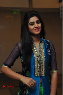 Actress Model Shamili Sounderajan Pos in Desginer Long Dress at Khwaaish Designer Exhibition Curtain Raiser  0014.JPG