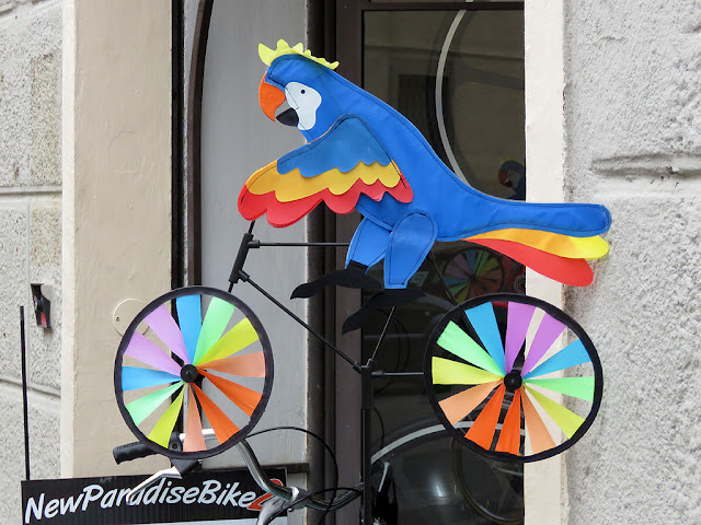 Parrot on a bike windmill, Via Roma, Livorno