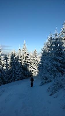 zejście na Przełęcz Jugowską