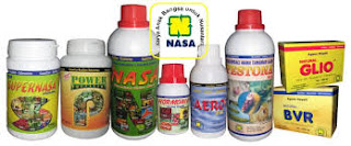 PAKAI PUPUK NASA HASIL PANEN TERONG MELIMPAH