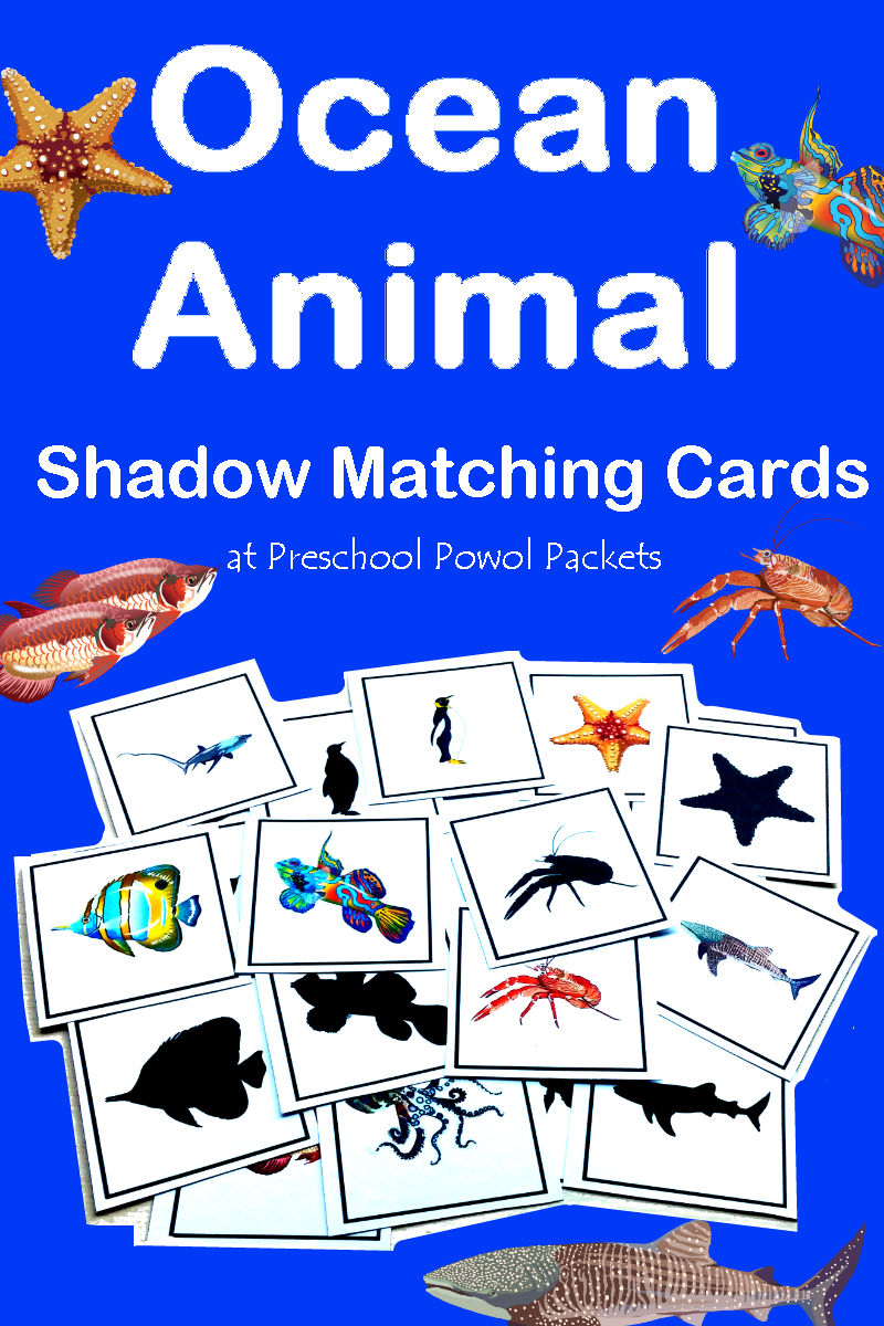 Greetings Worksheets For Kindergarten