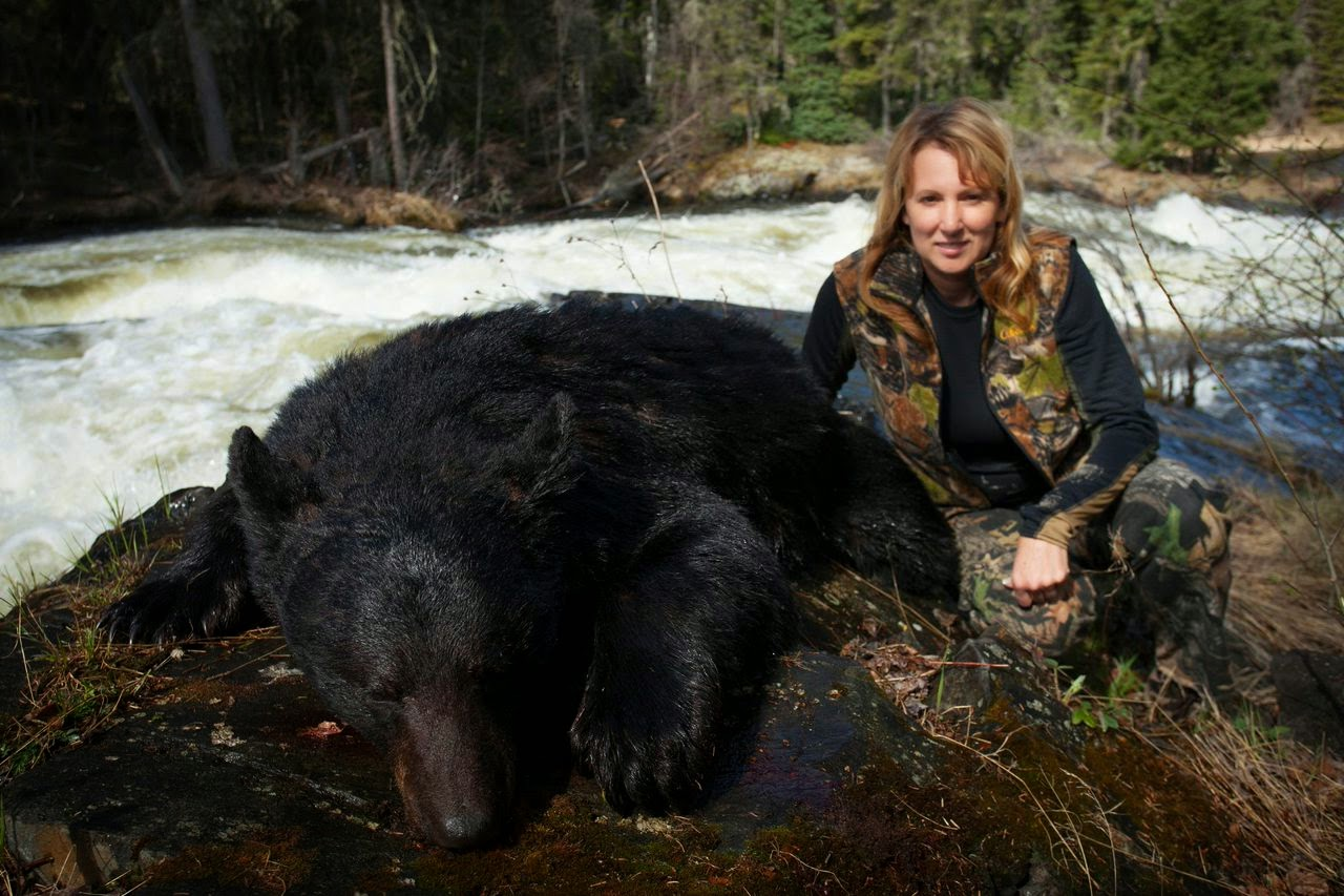 Poll Should The Slaughter Of Black Bears In Wisconsin Be