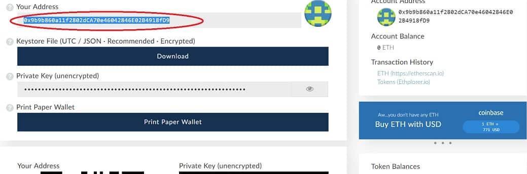 wallet SNOVIO SNOV criptomoneda guardar My Ether Wallet