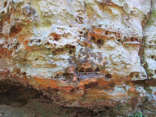 honeycombed rock, Hocking Hills, Ohio