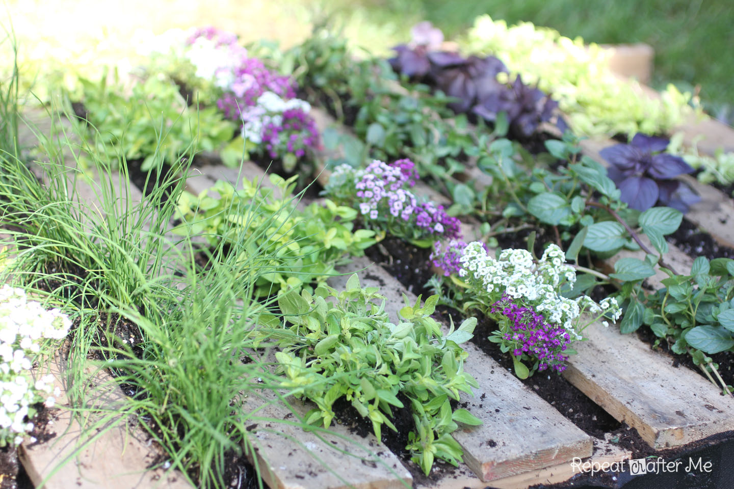 Wooden Pallet Herb Garden - Repeat Crafter Me