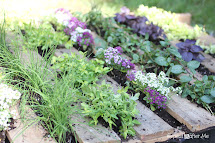 Wooden Pallet Herb Garden - Repeat Crafter