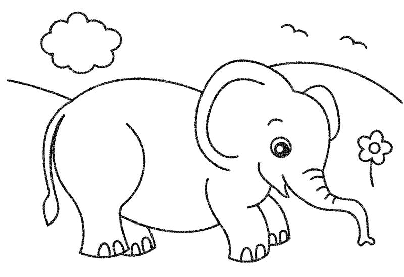 Mewarnai binatang gajah untuk anak TK
