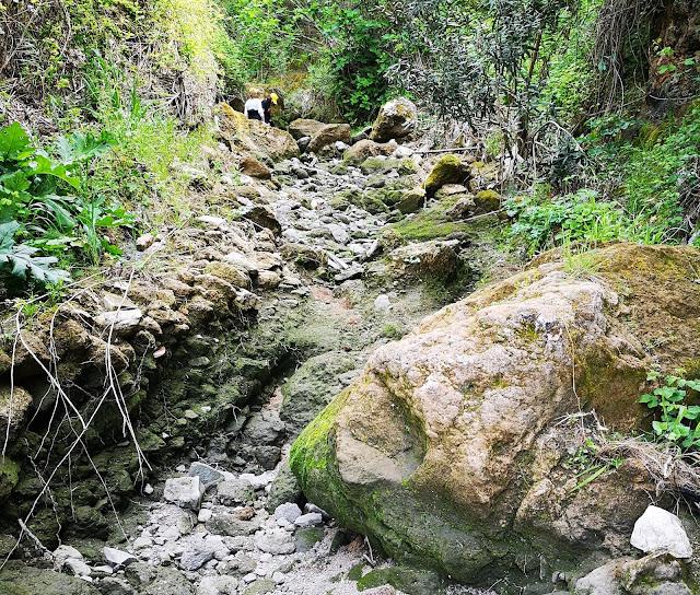 Il sentiero del fondovalle della gravina San Marco