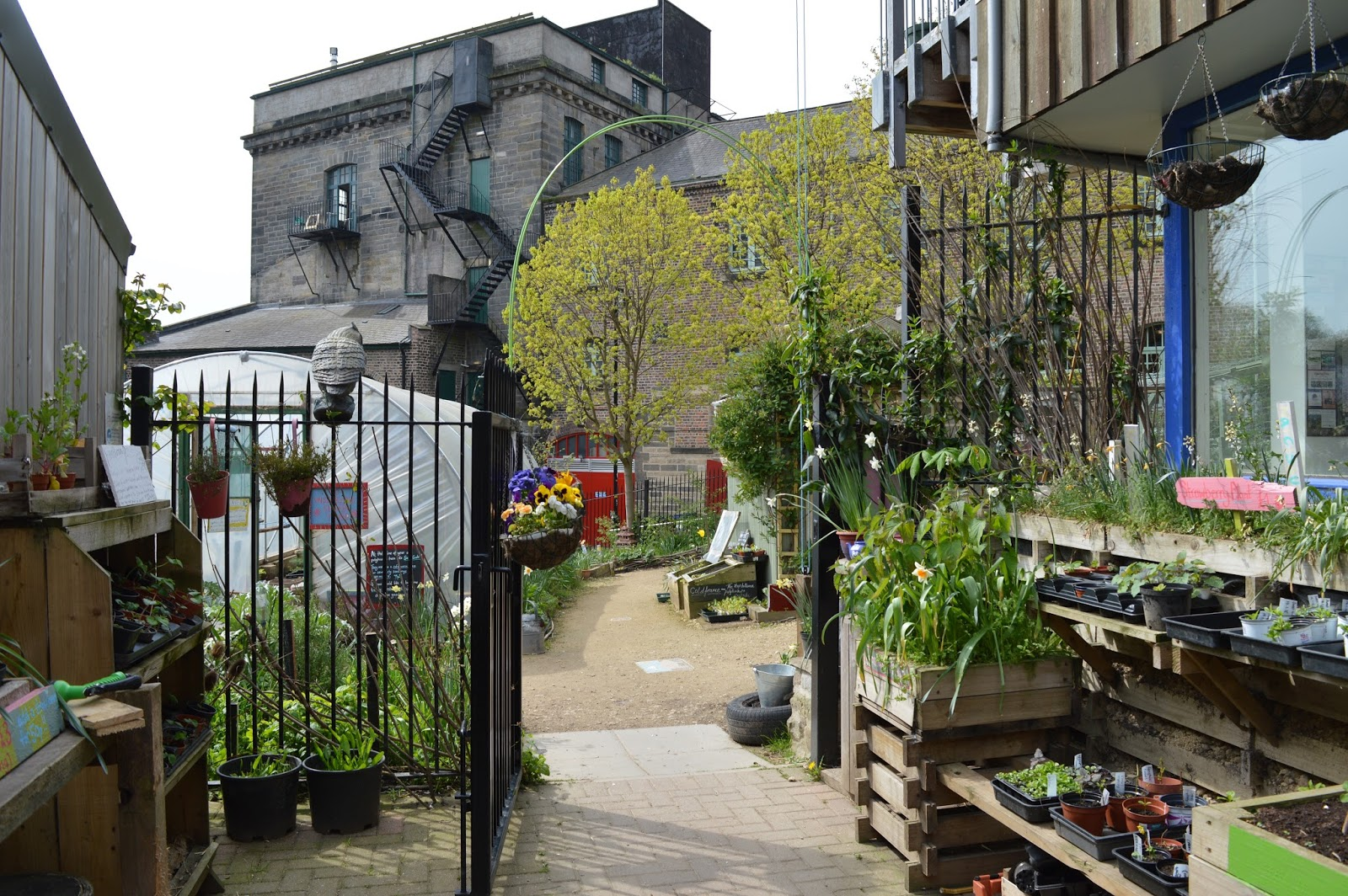 Beer Garden & Foodie Heaven in Ouseburn, Newcastle - Ouseburn City Farm