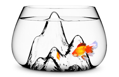 Creative Fish Bowls and Cool Aquarium Designs (15) 8