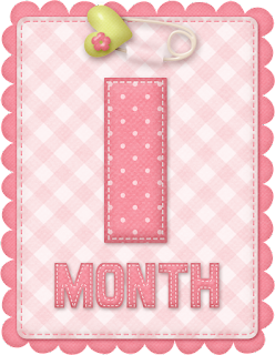 Free Printable Baby Month Counter for Girls.