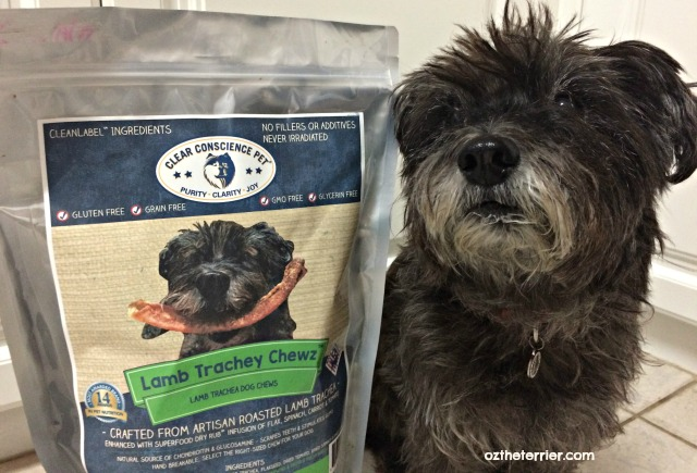 oz is coverdog for Clear Conscience Pet Lamb Trachey Chewz dog treats