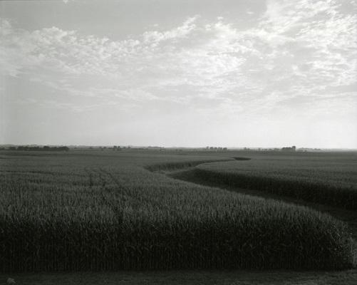 """""""from Illinois landscapes"""" - 2009 - photo by Rhondal Mckinney   sad black and white photos   imagenes bellas de soledad y tristeza, fotos en blanco y negro bonitas"""