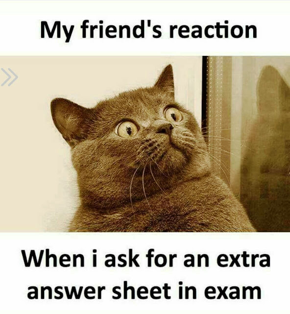 funny quotes for students in college, funny exam quotes, very funny photos download, funny cartoon images, very funny photo gallery, very funny photos gallery, very funny photo gallery